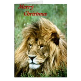 Merry Christmas lion Card