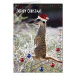 Merry Christmas Meerkat Greeting Cards