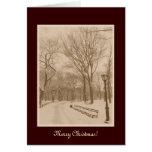 Merry Christmas - New York Central Park Snow Greeting Card