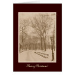 Merry Christmas - New York Central Park Snow Greeting Card