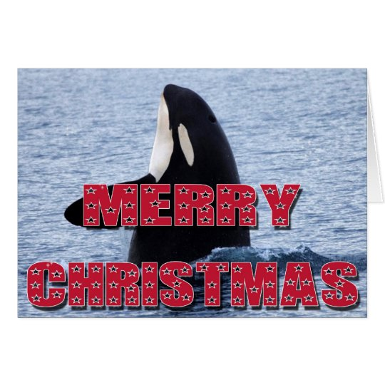 Merry Christmas Orca Whale Spy Hop Holiday Gifts