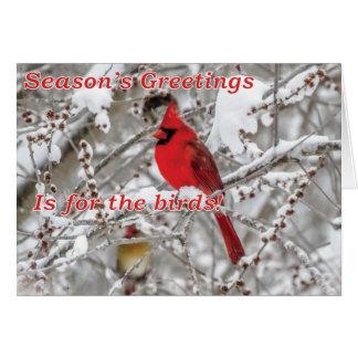 Merry Christmas over Seasons Greetings Card