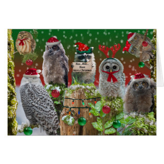 Merry Christmas Owls with a little raccoon Card