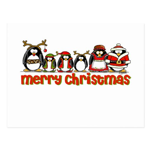 Merry Christmas Penguins Postcard