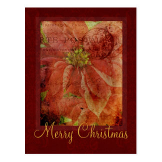 Merry Christmas Poinsettia Postcard