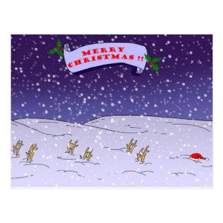 Merry Christmas !! Postcard