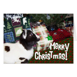 Merry Christmas Presents with Goat Rufus Greeting Card