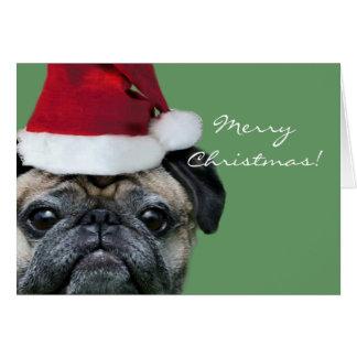 Merry Christmas Pug greeeting card