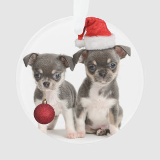 Merry Christmas Puppies Ornament