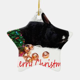 Merry Christmas Rabbit Ceramic Star Decoration