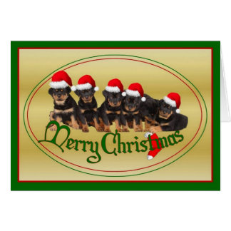 Merry Christmas Rottweiler Puppies Card