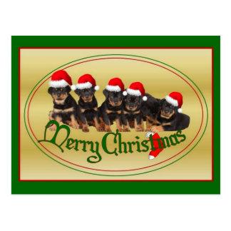 Merry Christmas Rottweiler Puppies Postcards