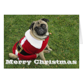 Merry Christmas Santa Pug Card