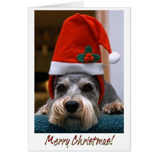 Merry Christmas Schnauzer Card