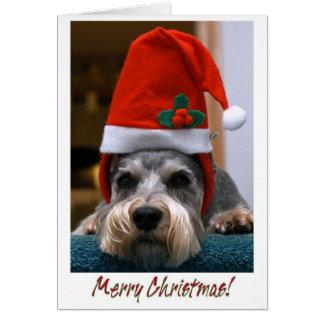 Merry Christmas Schnauzer Greeting Card