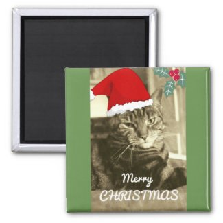 Merry Christmas Sepia Cat Old Photo Vintage Magnet