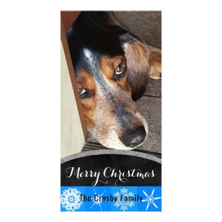 Merry Christmas Snowflakes   Pet Photo Beagle Dog Card