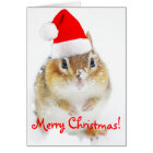 Merry Christmas Snowy Santa Chipmunk Card