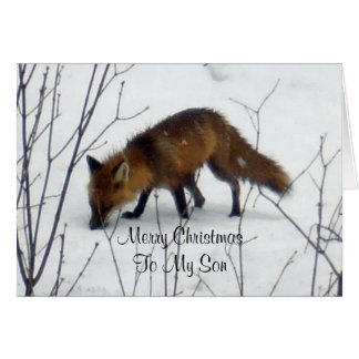 Merry Christmas Son-Fox in Snow Card