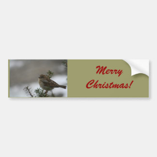 Merry Christmas Sparrow! with Scripture Bumper Stickers