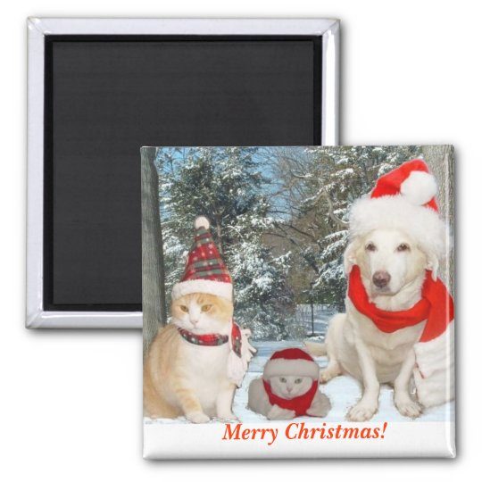 Merry Christmas! Square Magnet