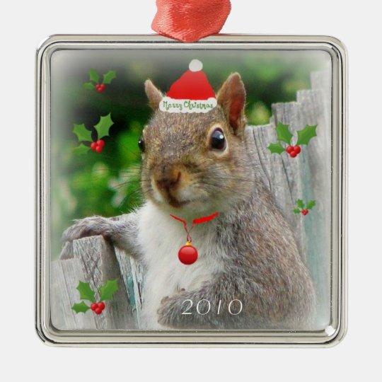Merry Christmas Squirrel 2010 Christmas Ornament