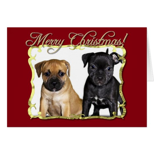 Merry Christmas Staffordshire bull terriers card