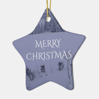 Merry Christmas Star Ornament Snow Landscape