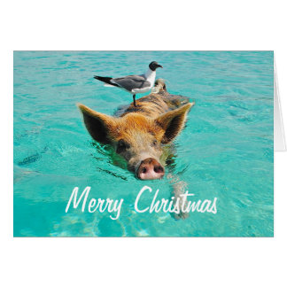 Merry Christmas Swimming Pig Greeting Card
