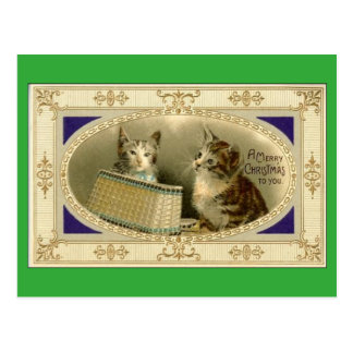 Merry Christmas To You Vintage Cats Postcard Green
