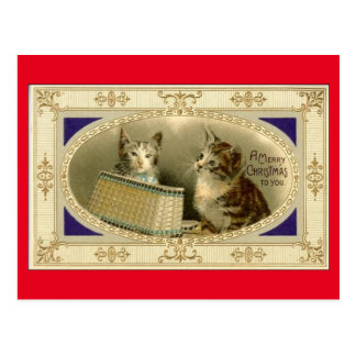 Merry Christmas To You Vintage Cats Postcard Red