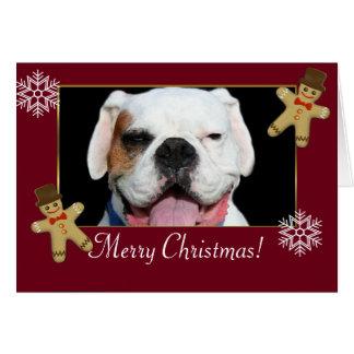 Merry Christmas  White Boxer Dog Card