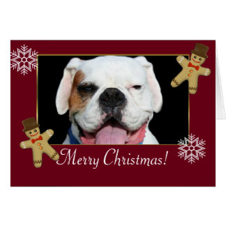 Merry Christmas  White Boxer Dog Greeting Card