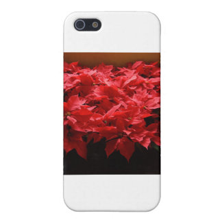 Merry Christmas, Yall! Poinsettias iPhone 5 Cover