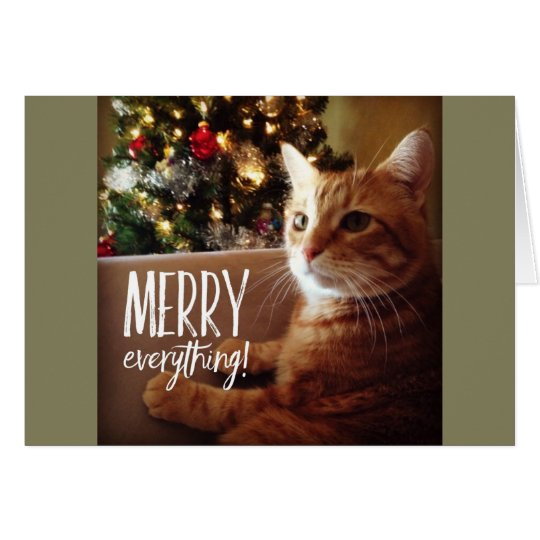 Merry Everything Cute Cat Christmas Holiday Card