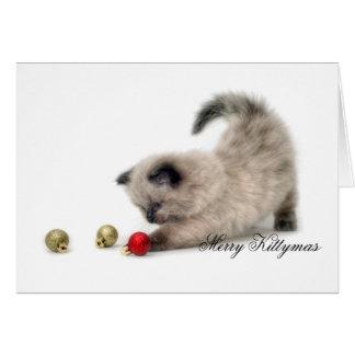 Merry Kittymas card