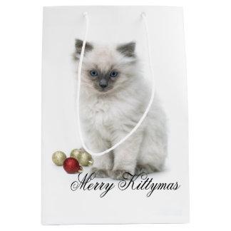 Merry Kittymas gift bag