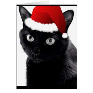 Merry Little Christmas Cat Card