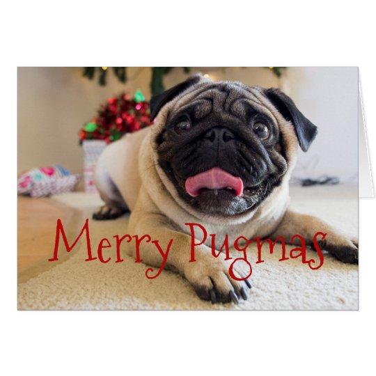 Merry Pugmas Christmas card