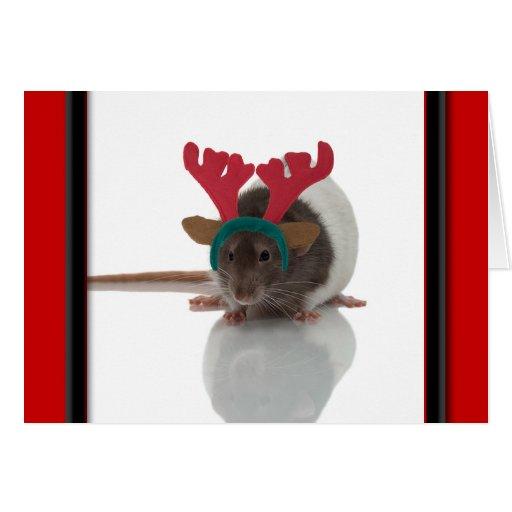 Merry Ratmas Cards