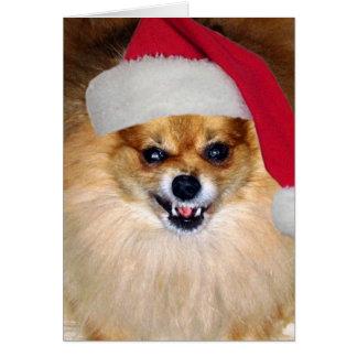 """Merry Woofing Christmas"" Pomeranian Santa Card"