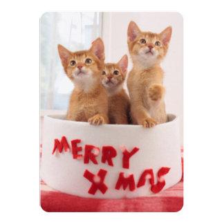 Merry Xmas Kitties 13 Cm X 18 Cm Invitation Card