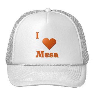 Mesa -- Burnt Orange Trucker Hats