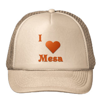 Mesa -- Burnt Orange Trucker Hat