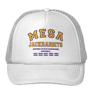Mesa Jackrabbits Mesh Hats