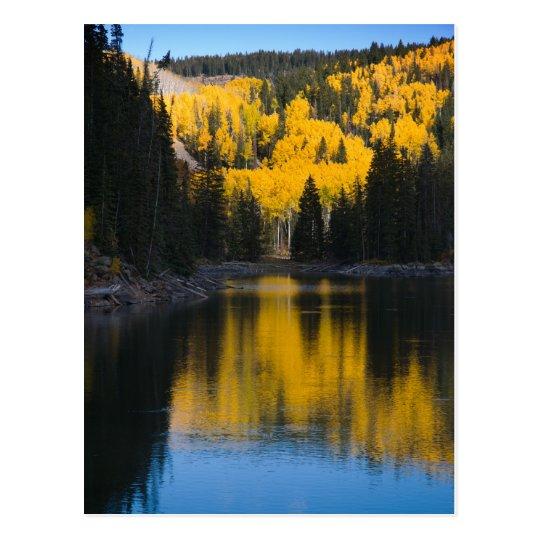 Mesa Lakes in Autumn Postcard