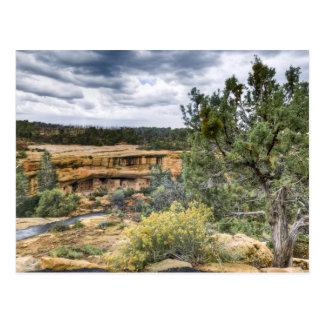 Mesa Verde Cliff Dwellings Postcard