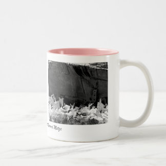 Mesa Verde National Park 2 Pictures Two-Tone Coffee Mug