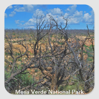 Mesa Verde National Park collection Square Sticker