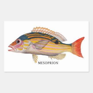 MESOPRION RECTANGULAR STICKER